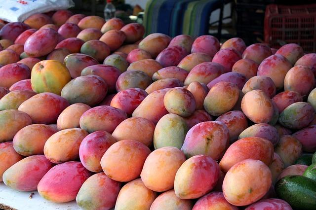 マルシェに並んだアップルマンゴー