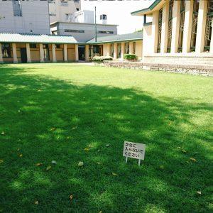 芝生は立ち入り禁止