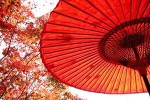 唐傘 番傘